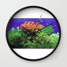 Dwarf Cichlid Aquarium Wall Clock