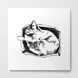 Cat in a Box Metal Print
