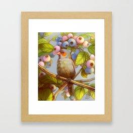 Orange cheeked waxbill finch with blueberries Framed Art Print