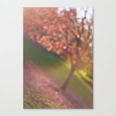 a hint of fall Canvas Print