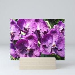Purple on Purple Mini Art Print