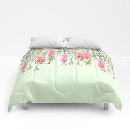 bottle brush tree flower Comforters