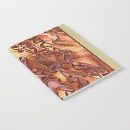 A STUDY OF MADRONA BARK Notebook