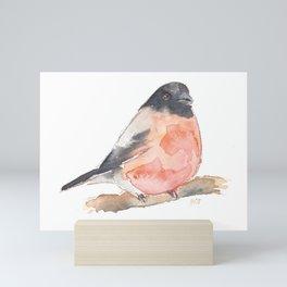 Clarence the Bullfinch Mini Art Print
