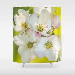 Close-up of Apple tree flowers on a vivid green background - Summer atmosphere Shower Curtain