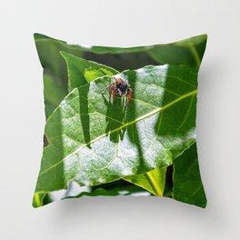 Red spider on a green leaf of a Mediterranean scrub plant Throw Pillow