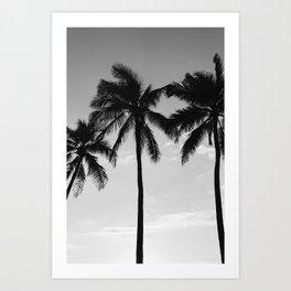 Hawaiian Palms III Art Print