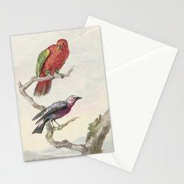 Tropical Bird Illustration - 18th Century Stationery Cards