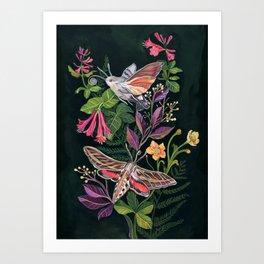 Hummingbird Moth Art Print