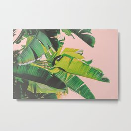 Banana Leaves III (Pink) Metal Print