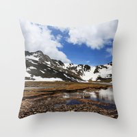 chris evans Throw Pillows featuring Mt. Evans, Colorado by Chris Root