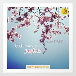 God's Way is Perfect Art Print