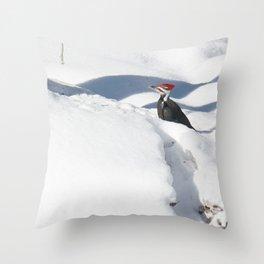 Snowbird 2 Throw Pillow