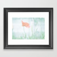 Lone poppy Framed Art Print