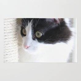 Curious Kitty Rug