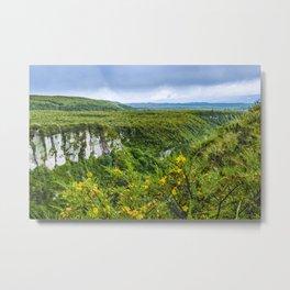 Cotopaxi National Park Landscape Scene Metal Print