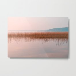 Sunset lake landscape, pink lake view on bullrushes with reflection Metal Print