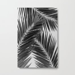 Palm Leaf Black & White III Metal Print