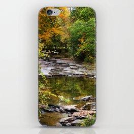 Fall Creek Landscape iPhone Skin