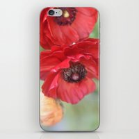 ruby iPhone & iPod Skins featuring Ruby by Lisa Argyropoulos