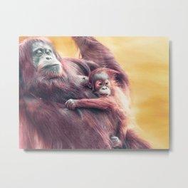 Baby and Mother Sumatran Orangutan Metal Print