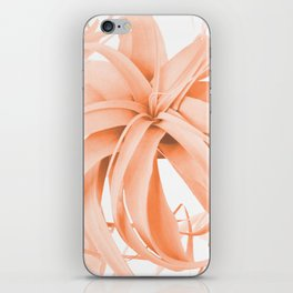 Coral Color Air Plant White Background #decor #society6 #buyart iPhone Skin