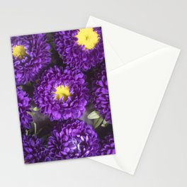 Bright Purple and Yellow Mum Flowers Stationery Cards