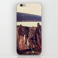 whiskey iPhone & iPod Skins featuring Whiskey Point by 1000PT