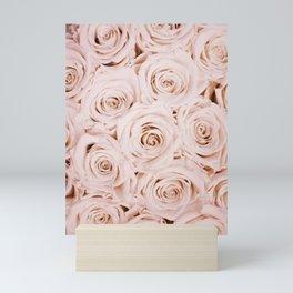 Blush Pink Roses Mini Art Print