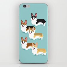 Color me Corgi iPhone & iPod Skin