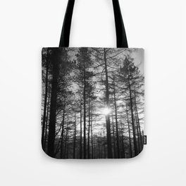 Winter Pine Forest 1 Tote Bag