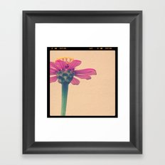 FLOWER 017 Framed Art Print