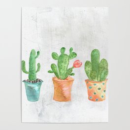 Three Green Cacti Watercolor White Poster