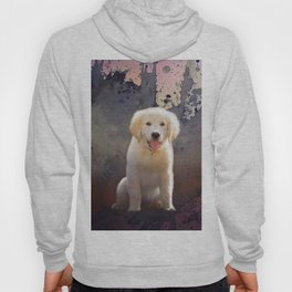 Golden Retriever Puppy Hoody