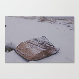 The Word Canvas Print