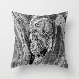 Echo the Screech Owl by Teresa Thompson Throw Pillow