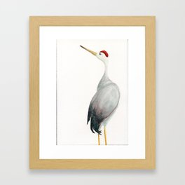 Crane Framed Art Print