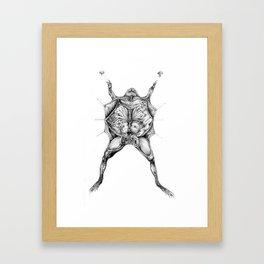 Frog Dissection Framed Art Print