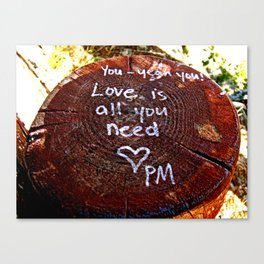 Love Is All You Need Canvas Print