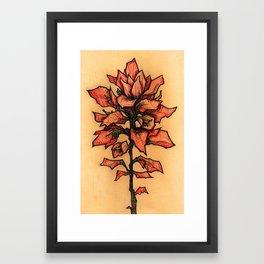 TEXAS PAINTBRUSH Framed Art Print