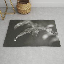 Rain Droplets II - Black and White Rug
