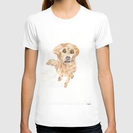 Golden Retriever, watercolor, pet, art, dog T-shirt