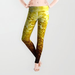 Golden Yellow Ombre Crystals Leggings