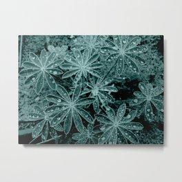 Raindrops III Metal Print