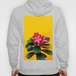 Red Flower with yellow background #society6 Hoody