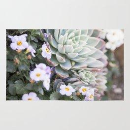 Echeveria 1  //  The Succulent & Cactus Series Rug