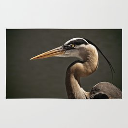 Great Blue Heron Close Up Portrait Rug