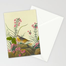 Robert Havell after John James Audubon - Yellow-winged Sparrow - 1832 Stationery Cards