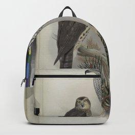 011 Astur palumbarius. Goshawk Backpack
