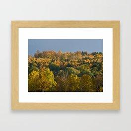 Pure Autumn Colours Framed Art Print